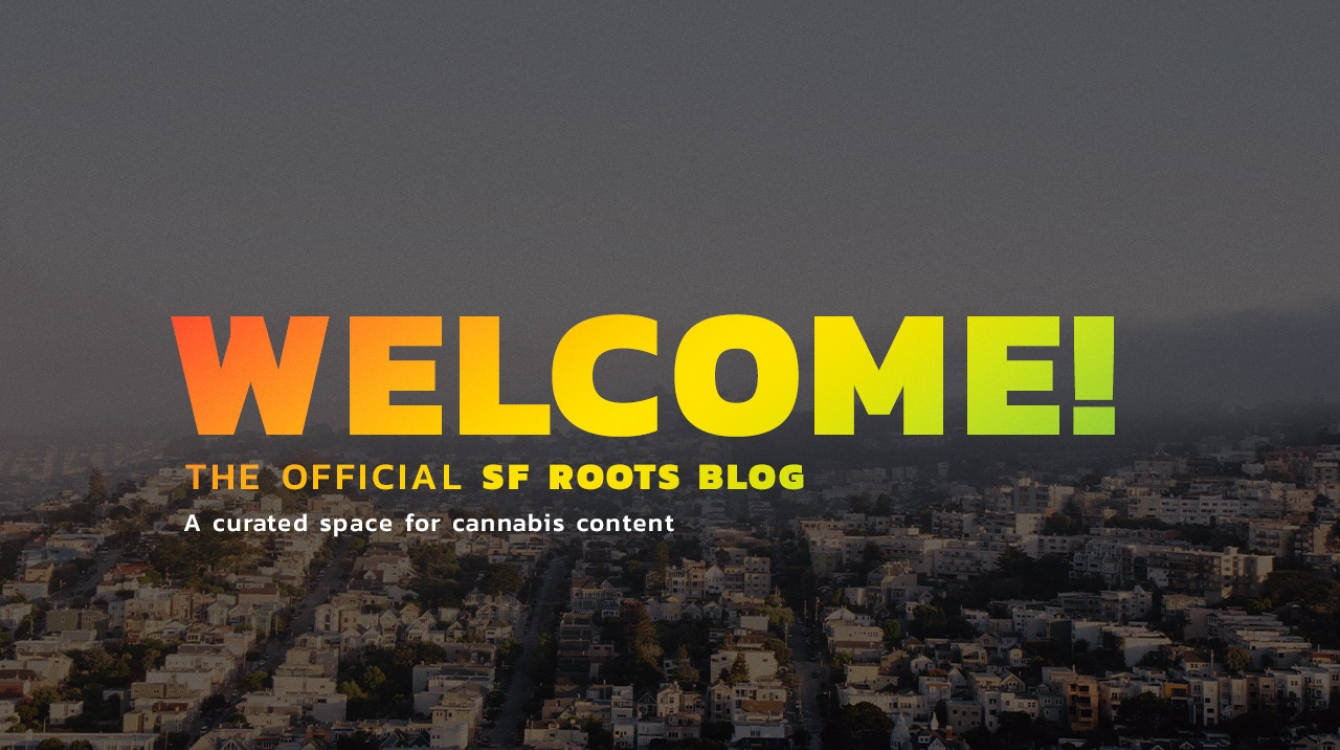 Blog Image - Welcome to the official SF Roots Blog